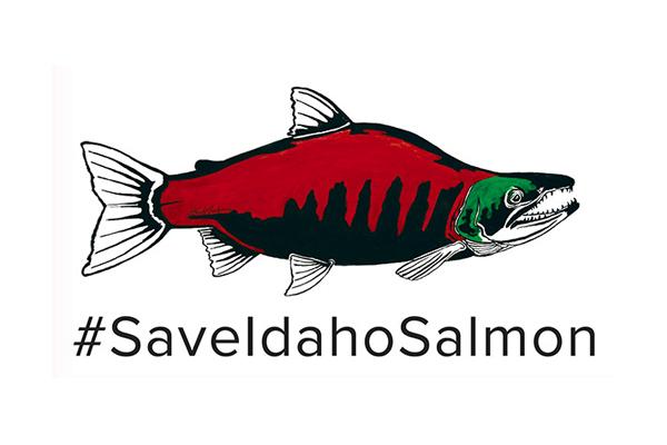 #saveidahosalmon